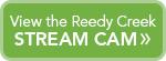 Reedy-Creek-stream-cam