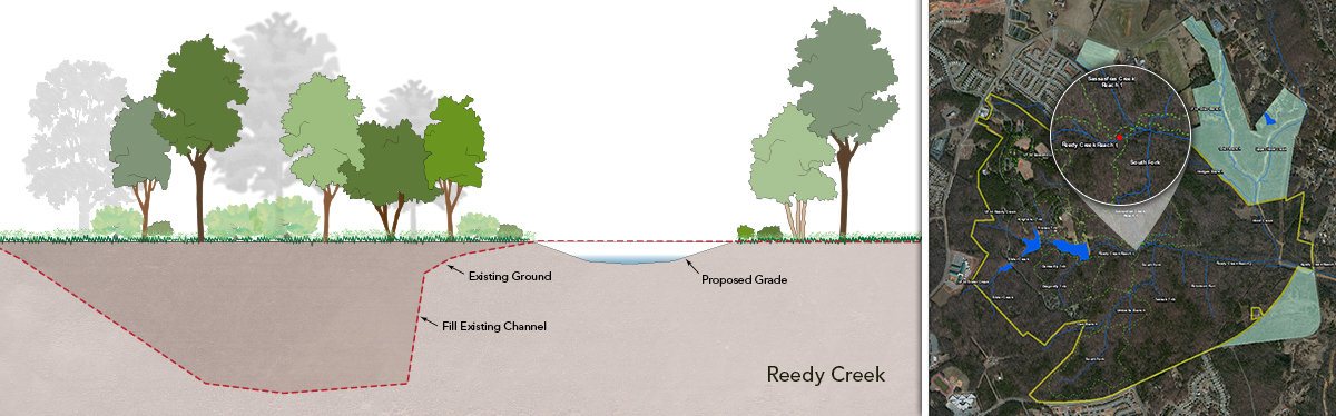 Reedy-Creek-with-map-SMALL