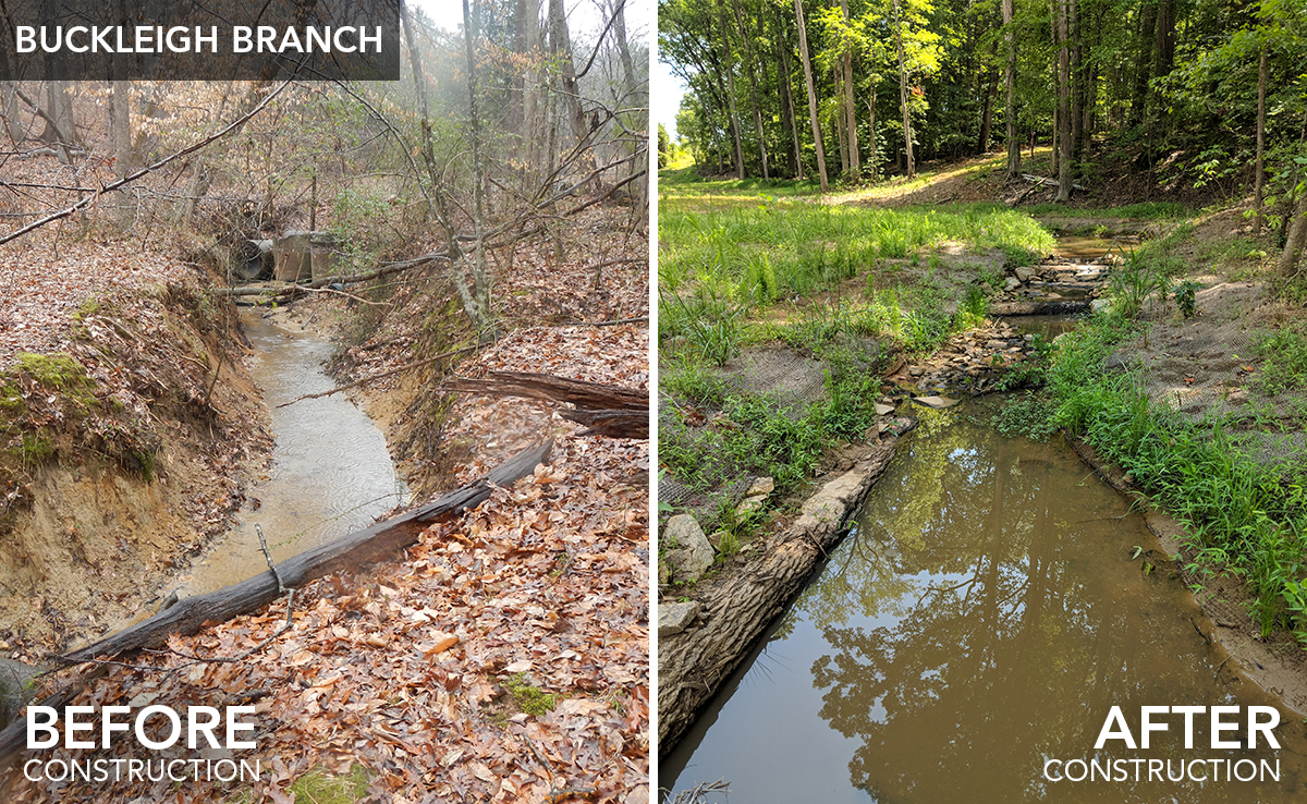 Buckleigh Branch_before-after