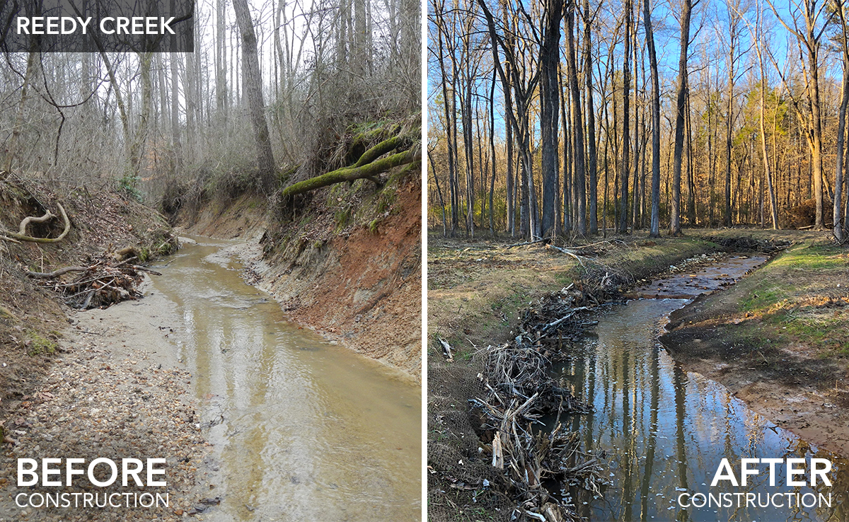 Reedy Creek_before-after